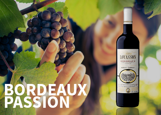 Wine - Bordeaux
